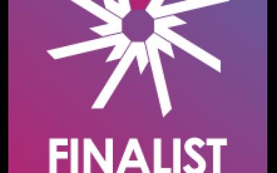 e-Assessment Awards finalists